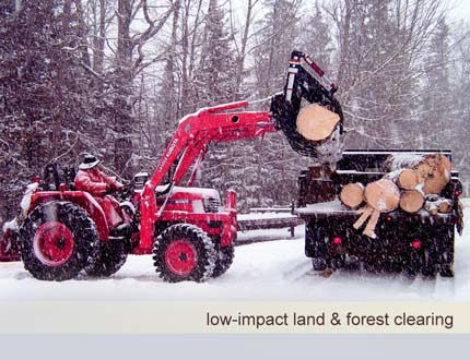 Land and forest clearing